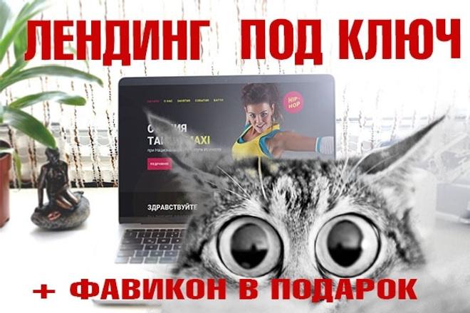 Лендинг под ключ с нуля или по примеру 45 - kwork.ru