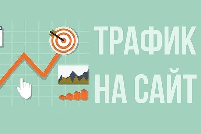 Трафик на ваш сайт с трастовых ресурсов - только реальные посетители 1 - kwork.ru