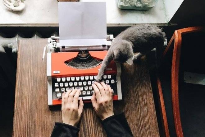 Напишу сценарий мультфильма, видео, короткометражного фильма 1 - kwork.ru