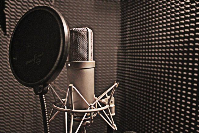 Озвучка рекламного аудио-ролика для радио, торгового центра 1 - kwork.ru