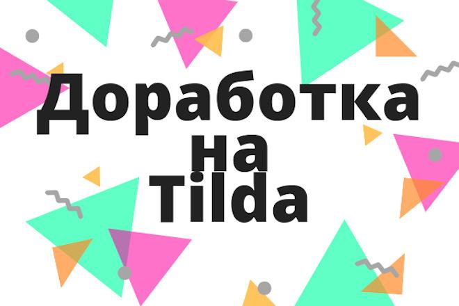 Tilda доработка лендинга, сайта 1 - kwork.ru