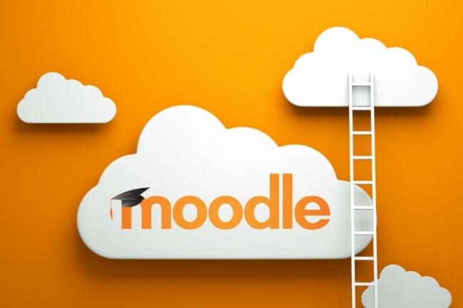 Установка Moodle на хостинг 1 - kwork.ru
