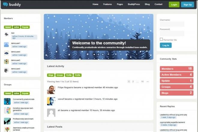 Тема BuddyPress для WordPress на русском с обновлениями 8 - kwork.ru