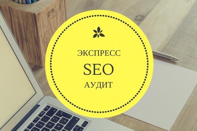 Экспресс аудит по SEO. Skype консультация 1 - kwork.ru