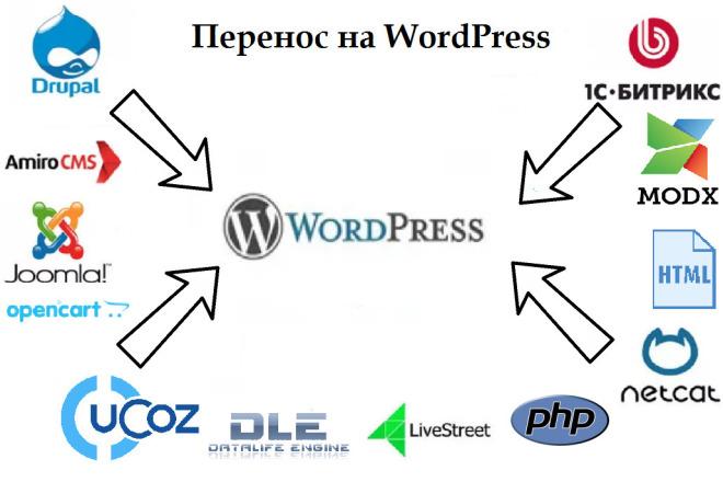 Перенос сайта на CMS Wordpress 1 - kwork.ru