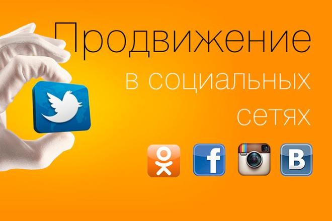 Продвижение в соц. Сетях 1 - kwork.ru