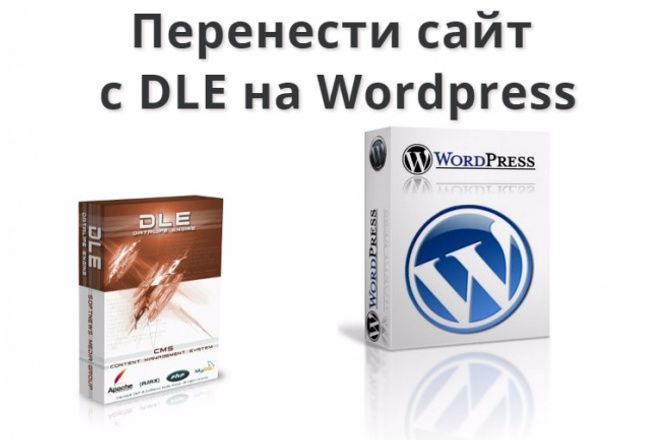 Перенесу ваш сайт с DLE на Wordpress 1 - kwork.ru