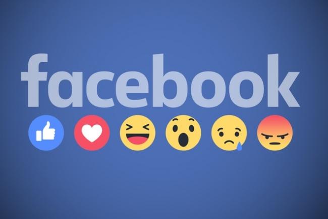 Продвижение Вашего сайта в Facebook с помощью размещения постов 1 - kwork.ru