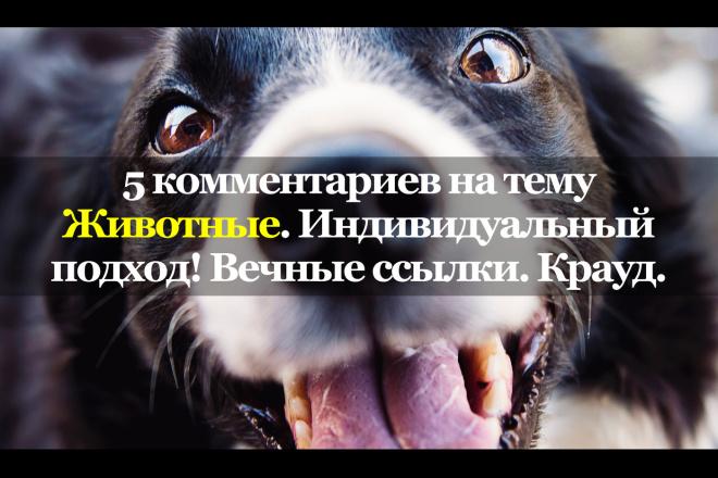 5 тематических комментариев. Животные. Вечные ссылки. Крауд 1 - kwork.ru