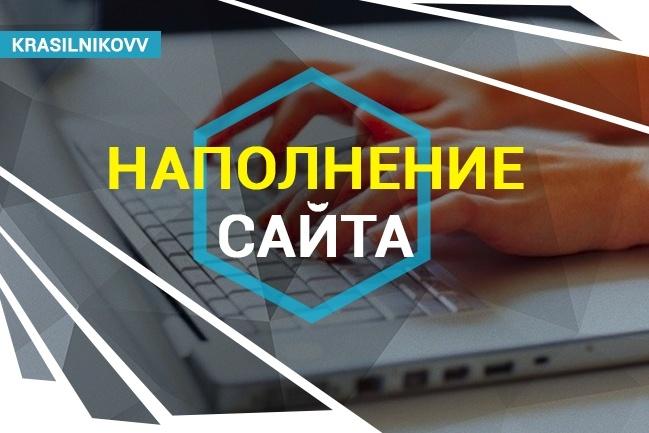 Наполнение сайта товаром 1 - kwork.ru