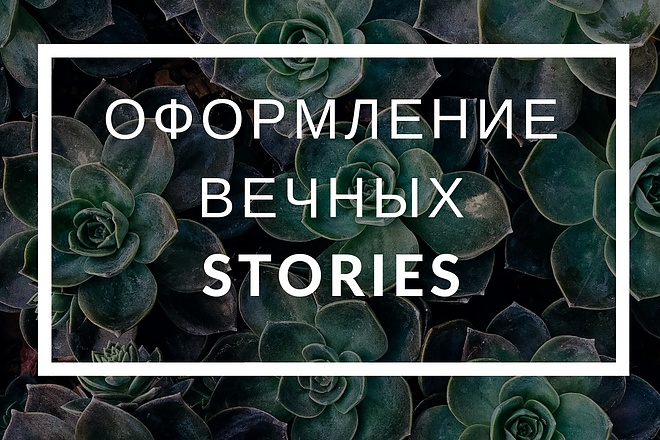 Оформлю вечные истории в Instagram 5 - kwork.ru
