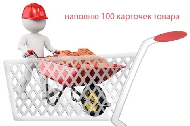 Наполню ваш интернет-магазин 1 - kwork.ru