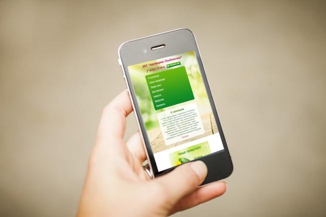 Адаптация сайта под мобильные устройства 102 - kwork.ru