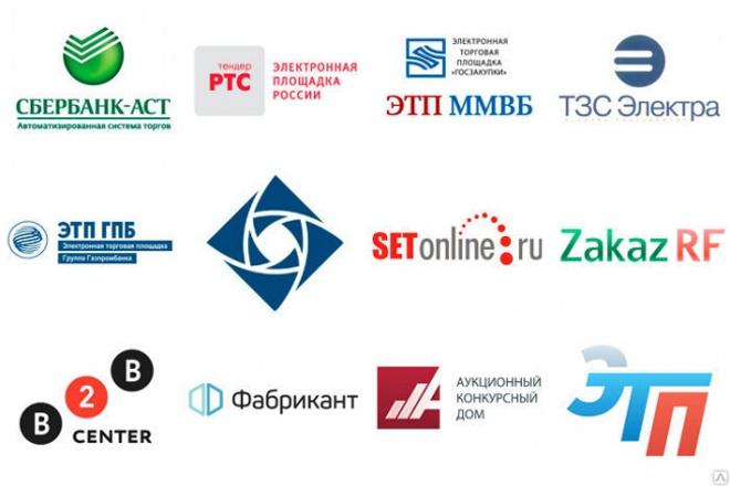 Пройду регистрацию на электронных торговых площадках для Поставщика 1 - kwork.ru