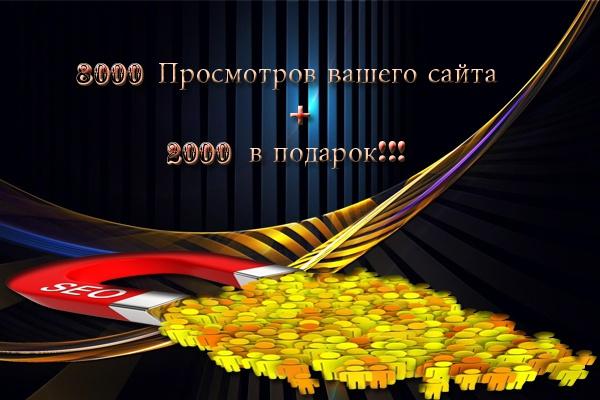 1000 просмотра вашего сайта за сутки 1 - kwork.ru