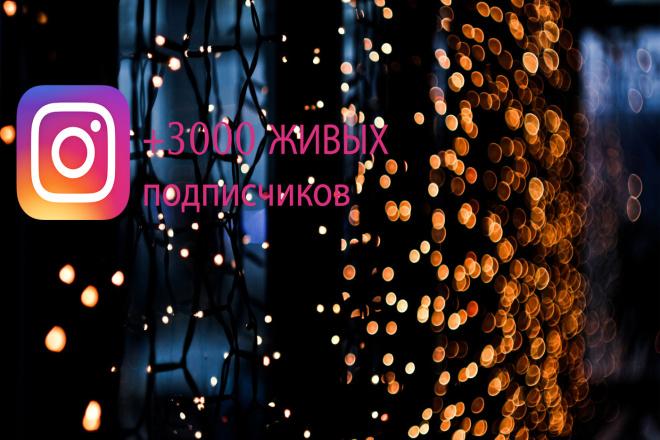 3000 живых подписчиков на страницу в instagram 1 - kwork.ru