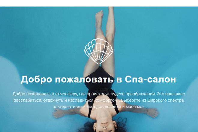 Продам сайт лендинг для Спа салона, Вордпресс +10 сайтов Есть демо. 42 фото