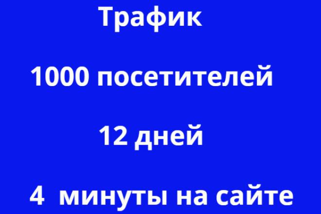 Поведенческий трафик 1000 посетителей от 4 до 5 минут . 12 дней 1 - kwork.ru