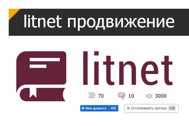 Litnet. Продвижение книг 1 - kwork.ru
