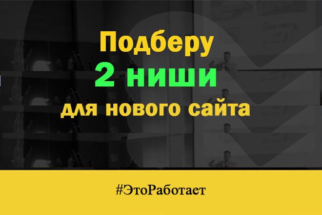 Подберу 2 ниши для нового сайта и дам план по расходам и продвижению 1 - kwork.ru