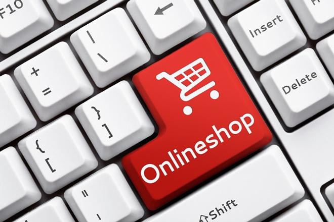 Установлю и настрою интернет-магазин на Wordpress 1 - kwork.ru