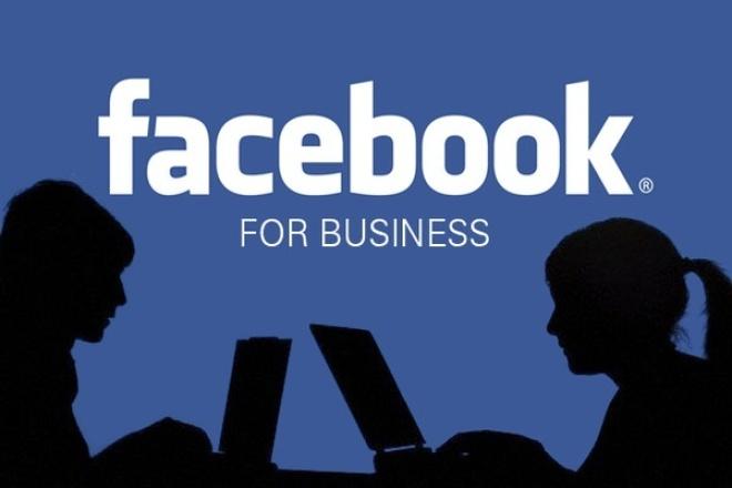 Соберу базу id вашей целевой аудитории в Facebook 1 - kwork.ru