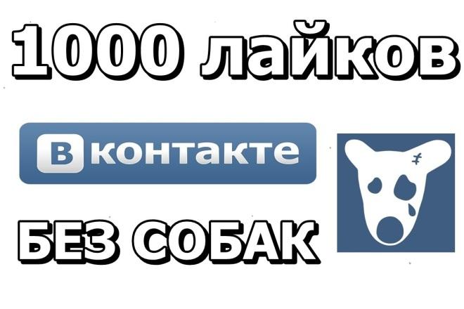 1000 лайков и просмотров от живых людей во Вконтакте 1 - kwork.ru