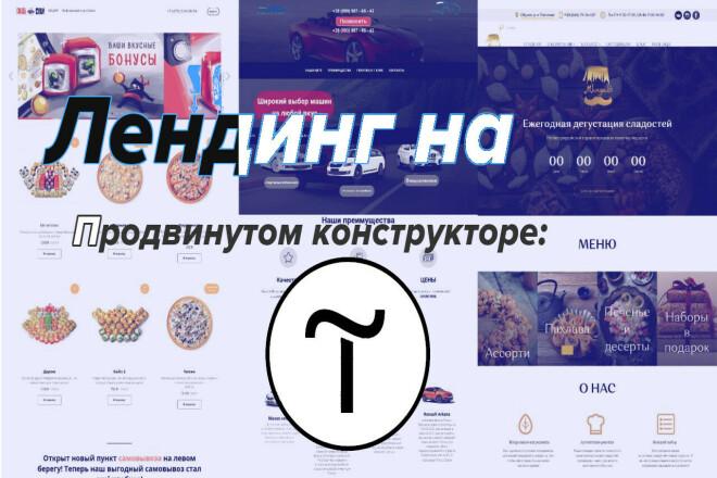 Создание сайта на Tilda фото