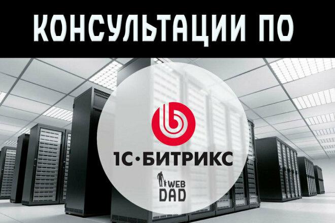 Помощь по разным CMS голосом, или по демонстрации экрана по скайпу 1 - kwork.ru