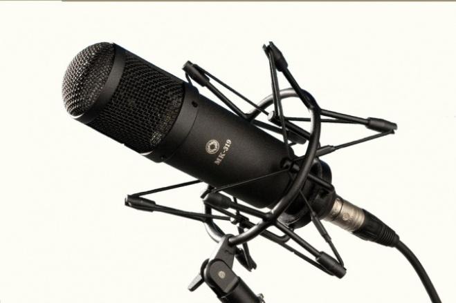 Начитаю текст в микрофон 2 - kwork.ru