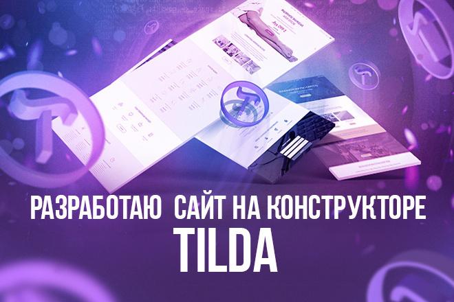 Разработаю качественный, продающий сайт на конструкторе Тильда 16 - kwork.ru