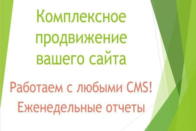 Комплексное продвижение сайта 1 - kwork.ru