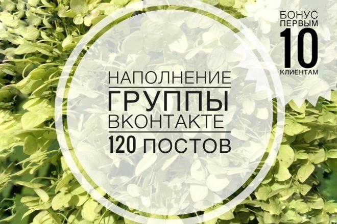 Контент для ВК. Размещение 120 постов в группу ВКонтакте 1 - kwork.ru