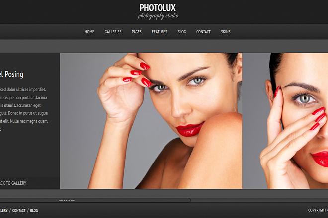 Тема Photolux для WordPress на русском с обновлениями и плагинами 5 - kwork.ru