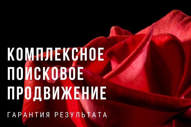 Комплексное продвижение сайта. Увеличение посещаемости гарантировано 1 - kwork.ru