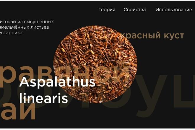 Разработка стилистики дизайн сайта 4 - kwork.ru