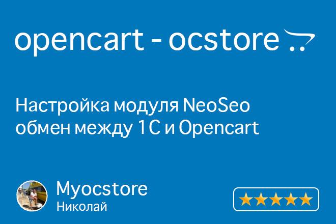Установка и настройка модуля NeoSeo. 1С и OpenCart 1 - kwork.ru