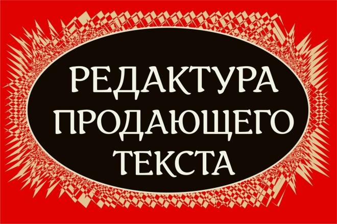 Отредактирую продающий текст 1 - kwork.ru