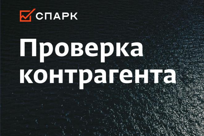 Формирование отчетов из базы данных СПАРК 1 - kwork.ru