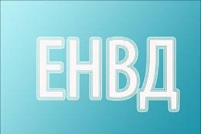 Декларация по ЕНДВ 1 - kwork.ru