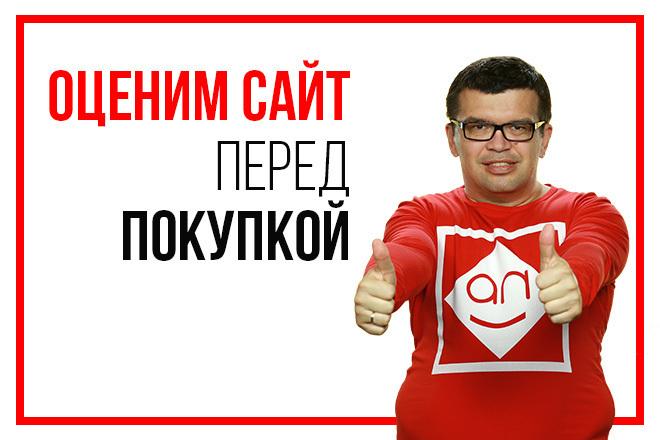 Дам реальную оценку стоимости сайта перед покупкой 1 - kwork.ru