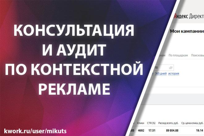 Аудит и консультация по контекстной рекламе Яндекс Директ 1 - kwork.ru