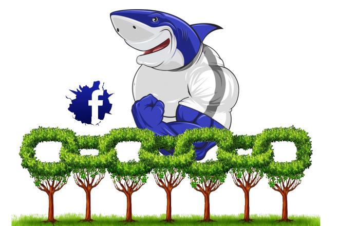 15.000 соц сигналов Facebook + Бонус 6.000 вечных обратных ссылок 1 - kwork.ru