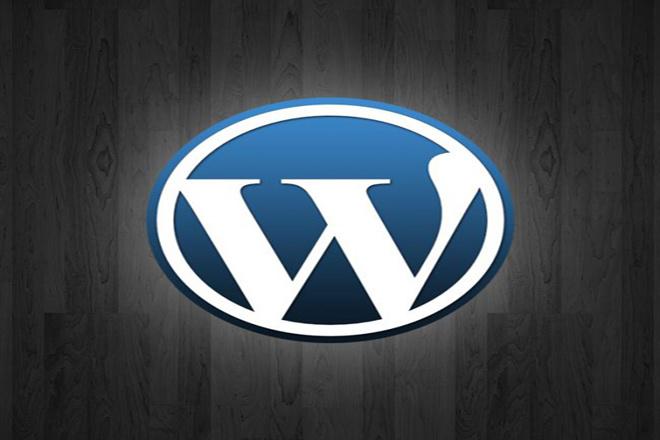 Видеокурс Wordpress с нуля до про 1 - kwork.ru