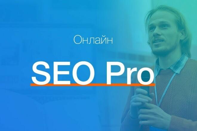 SEO Pro Авторский курс 1 - kwork.ru