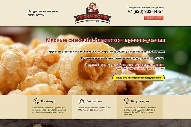 Продающий Landing Page под ключ 55 - kwork.ru