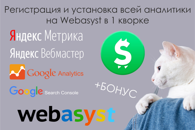 Регистрация и установка всей аналитики на Webasyst фото