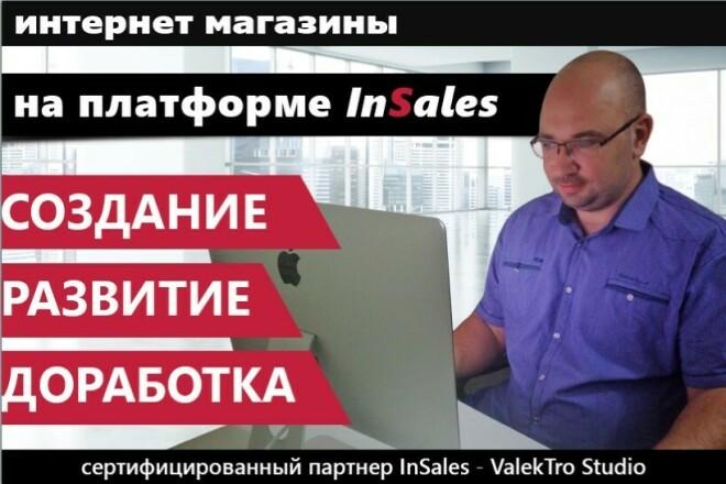 Доработки интернет-магазинов на платформе InSales 1 - kwork.ru