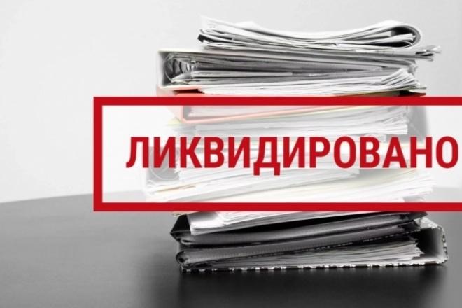 Ликвидация ООО, ИП 1 - kwork.ru