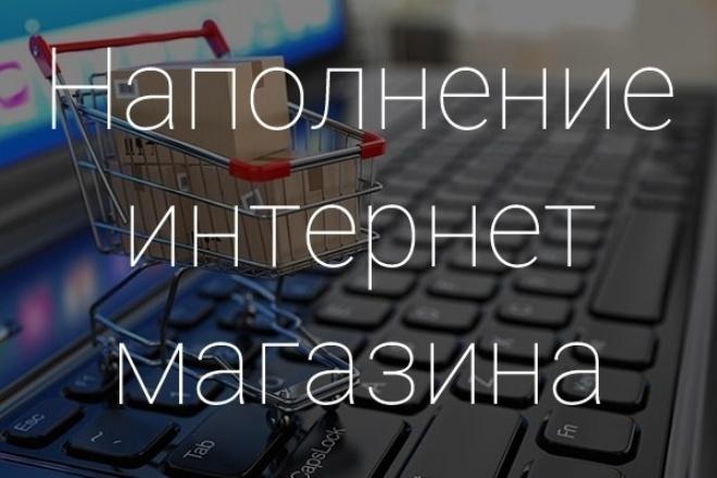 Наполню интернет-магазин товаром 1 - kwork.ru